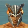 Warrior Templar Armor M dyed head front.jpg