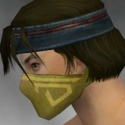 Assassin Shing Jea Armor M dyed head side.jpg