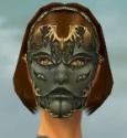 Mesmer Primeval Armor F gray head front.jpg