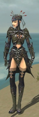 Necromancer Elite Necrotic Armor F gray front.jpg