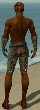 Ranger Ascalon Armor M gray arms legs back.jpg