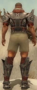 Warrior Asuran Armor M gray chest feet back.jpg