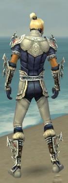 Assassin Norn Armor M dyed back.jpg
