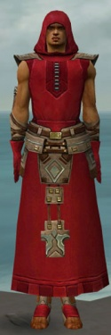 Dervish Istani Armor M dyed front.jpg