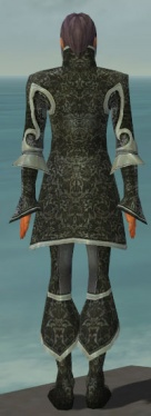 Elementalist Elite Canthan Armor M gray back.jpg