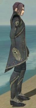 Elementalist Tyrian Armor M gray side.jpg