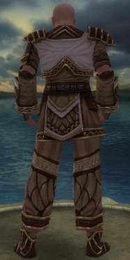 Monk Elite Canthan Armor M gray back.jpg