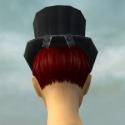 Dapper Tuxedo F head back.jpg