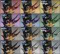 Golden Talons dye chart.jpg