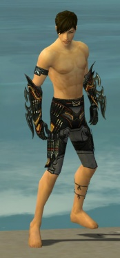 Assassin Elite Kurzick Armor M gray arms legs front.jpg
