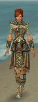 Monk Elite Luxon Armor F gray front.jpg