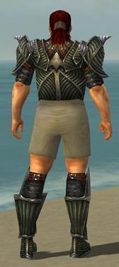 Warrior Wyvern Armor M gray chest feet back.jpg