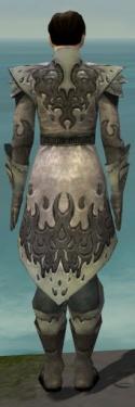 Elementalist Flameforged Armor M gray back.jpg