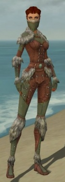 Ranger Fur-Lined Armor F gray front.jpg