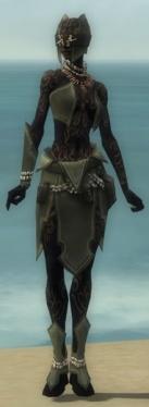 Ritualist Kurzick Armor F gray front.jpg