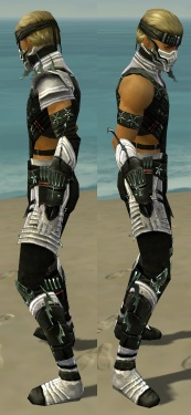 Assassin Elite Luxon Armor M dyed side.jpg