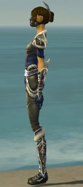 Assassin Norn Armor F gray side.jpg