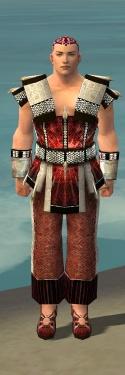 Monk Elite Sunspear Armor M dyed front.jpg