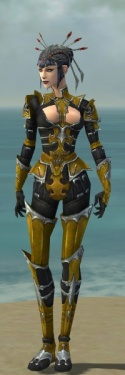 Necromancer Tyrian Armor F dyed front.jpg