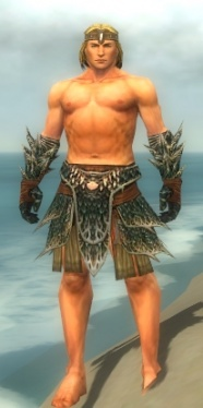 Warrior Luxon Armor M gray arms legs front.jpg