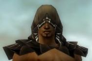 Dervish Primeval Armor M dyed head front.jpg