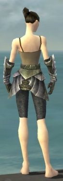 Warrior Templar Armor F gray arms legs back.jpg