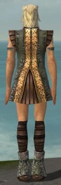 Elementalist Istani Armor M gray chest feet back.jpg