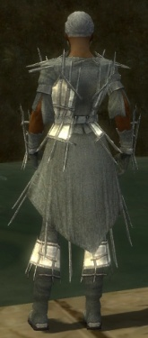 Elementalist Primeval Armor M gray back.jpg