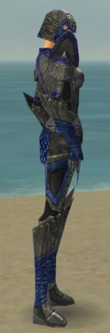Warrior Elite Platemail Armor F dyed side.jpg