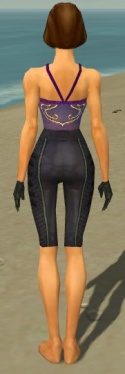 Mesmer Elite Rogue Armor F gray arms legs back.jpg
