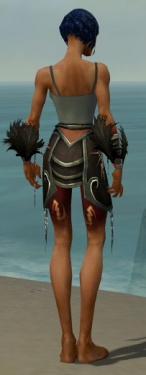 Necromancer Sunspear Armor F gray arms legs back.jpg