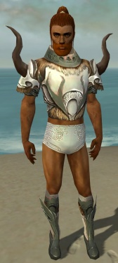 Paragon Norn Armor M gray chest feet front.jpg