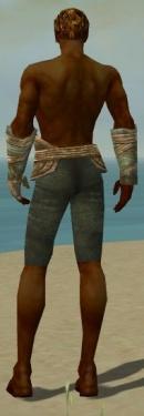Ranger Tyrian Armor M gray arms legs back.jpg