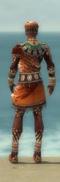Ritualist Elite Exotic Armor M dyed back.jpg