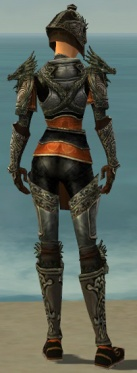 Warrior Elite Canthan Armor F gray back.jpg