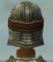 Warrior Sunspear Armor F gray head back.jpg