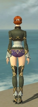 Mesmer Monument Armor F gray chest feet back.jpg