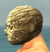 Mummy Mask gray side.jpg