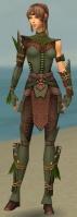 Ranger Druid Armor F gray front.jpg