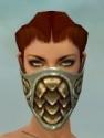 Ranger Elite Canthan Armor F gray head front.jpg
