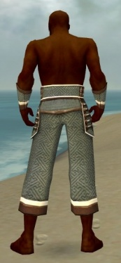Monk Elite Judge Armor M gray arms legs back.jpg