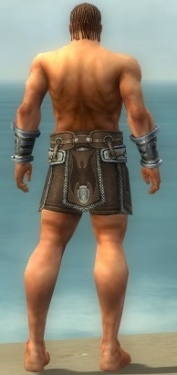 Warrior Gladiator Armor M gray arms legs back.jpg