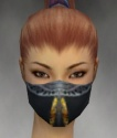 Assassin Exotic Armor F gray head front.jpg