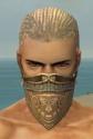 Ranger Asuran Armor M gray head front.jpg