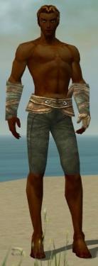 Ranger Tyrian Armor M gray arms legs front.jpg