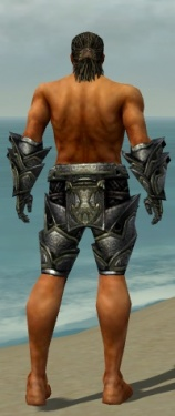 Warrior Obsidian Armor M gray arms legs back.jpg