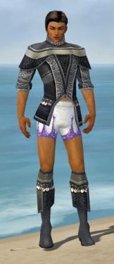 Elementalist Luxon Armor M gray chest feet front.jpg