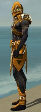 Ritualist Elite Kurzick Armor M dyed side.jpg