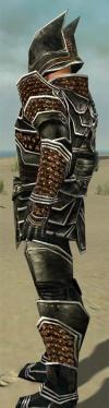 Warrior Kurzick Armor M dyed side.jpg