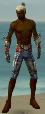 Assassin Monument Armor M gray arms legs front.jpg